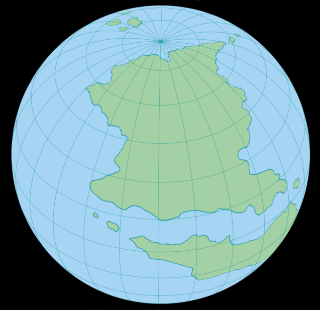 North polar view